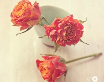 orange roses flower photo print - whimsical fine art photography, wall art, floral, bright, colour, pretty