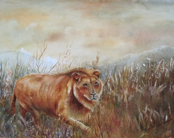 Lion - watercolor painting of South Africa