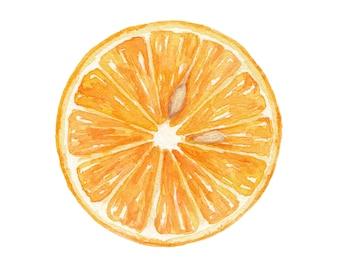 Valencia Orange / Watercolor Illustration / Food Illustration / Art Print / Giclée Print / Wall Art / Home Decor