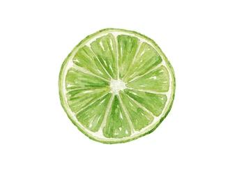 Lime / Watercolor Illustration / Food Illustration / Art Print / Giclée Print / Wall Art / Home Decor
