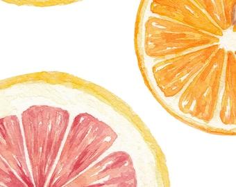 Grapefruit & Orange / Watercolor Illustration / Food Illustration / Art Print / Giclée Print / Wall Art / Home Decor