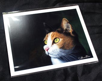Bright Eyes Cat Drawing - PRINT