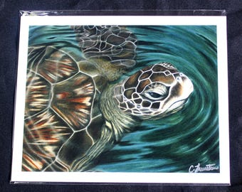 Sea Turtle Colored Pencil Drawing - PRINT