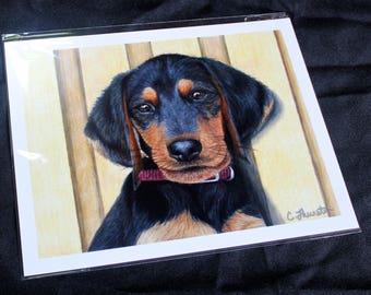 Beagle/Dachshund Puppy Drawing - PRINT