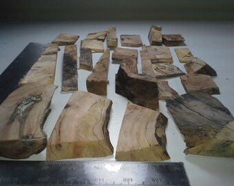 Spalted Stabilized Sugar Maple 23 PCS Lot 500+g 1+lb Free Shipping