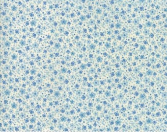 Biscuits and Gravy Bee Crazy Creamy 30483 13 by Basic Grey for Moda