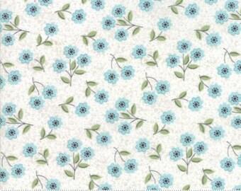 Blossom Eggshell Robins Egg 5062 21 Nest by Lella Boutique - Moda