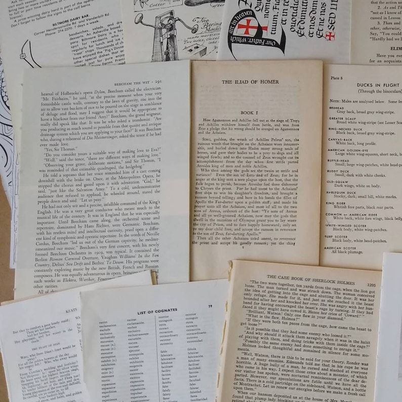Vintage Book Pages Mixed Lot