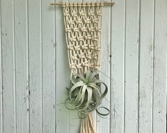 Macrame Air Plant Hanger w/ Wooden Dowel- For Large/XL Air Plants- Tillandsia Xeropgraphica (NOT INCLUDED)- Natural Home & Wall Decor