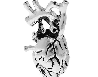 1pcs Antique Silver Anatomical Heart Pendant - 27x13mm - Ships from USA, Morbid Pendant, Silver Pendant, Heart Charm, Medical Charm - O61