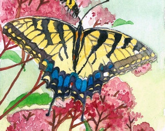 Swallowtails in summer garden ACEO Limited Edition
