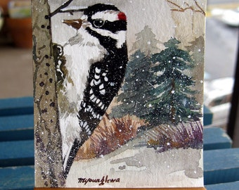 ACEO Limited Edition - Downy woodpecker