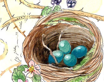 ACEO Limited Edition 1/25- Robin nest, Bird print of an original ACEO watercolor, Small gift idea for bird lovers