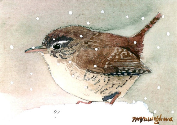 ACEO Limited Edition Wren in summer wood Art card gift idea