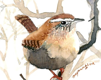ACEO Limited Edition - Wren in foggy forest, in watercolor