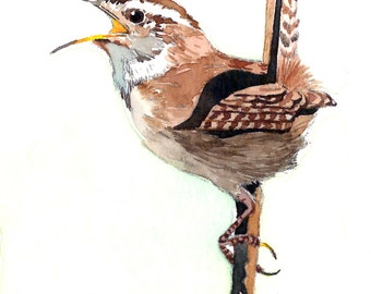 ACEO Limited Edition 1/25 - Shadow of the day, Wren in marsh, Bird art print, Collectable art