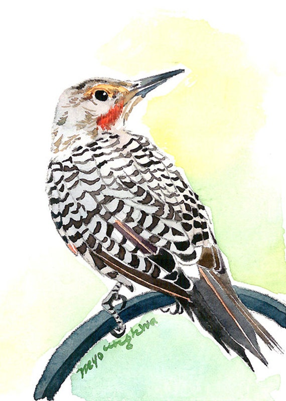 Watching the woodpecker,Art print Gift for bird lovers ACEO Limited Edition