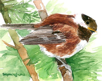 ACEO Limited Edition 1/25-Woodland chickadee,Chestnut backed chickadee chickadee, Bird art print, Small gift for bird lovers,Collectable art