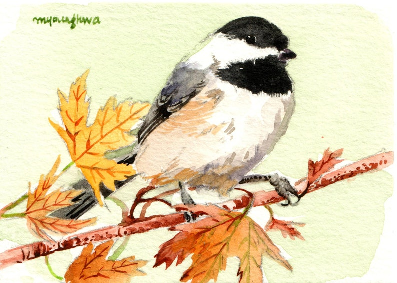 ACEO Limited Edition-Chickadee bird print of an ACEO original watercolor by Anna