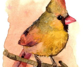 ACEO Limited Edition 2/25- Baby cardinal