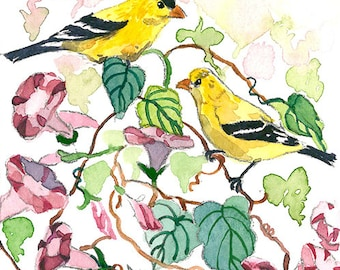 ACEO Limited Edition  1/25- Goldfinch and morning glories