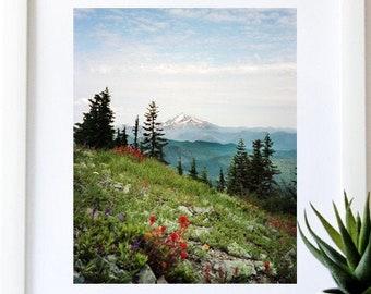 Oregon Art.Wall Decor.Mt Hood.Mountain.Art Print.35mm Film.Photo Print.Fine Art Photography.Wildflowers.SEVERAL SIZES & Poster