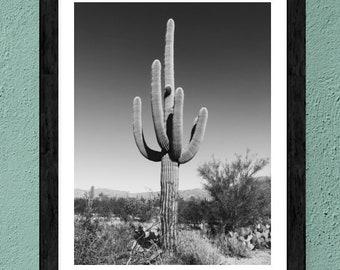 Saguaro Cactus Art.Wall Decor.Desert.Wall Decor.Arizona.Sunset.black and white. SEVERAL SIZES
