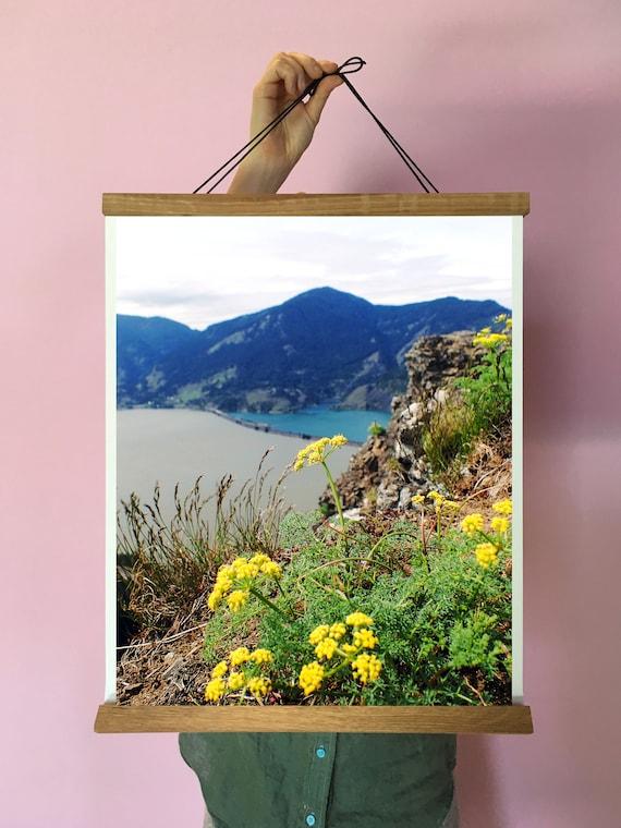 Wildflower Art Oregon Columbia River Gorge Walldecor Yellow Etsy