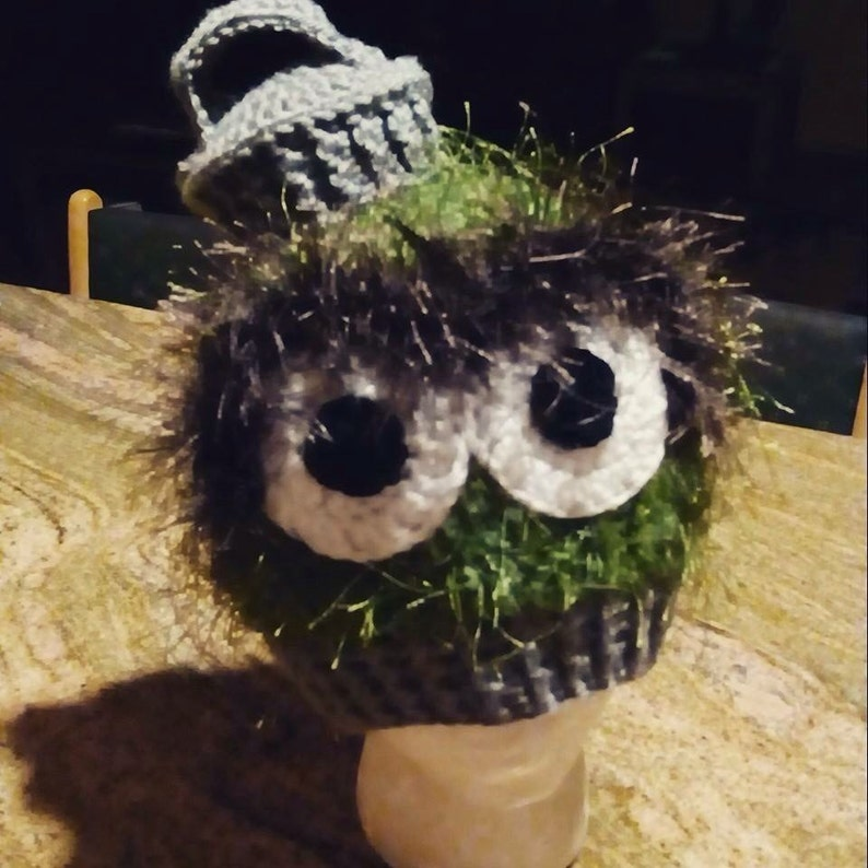 a4c511319b3 Oscar The Grouch Crochet Beanie