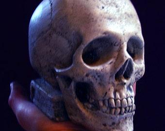 Skull Bookend, classic skull decor not just for Halloween!
