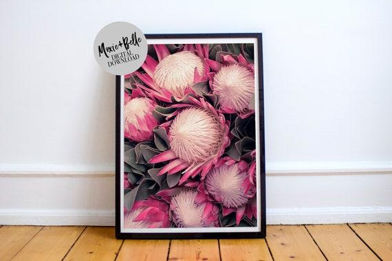 Protea's -Printable Art