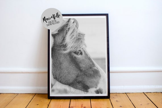 Black and White Horse Printable