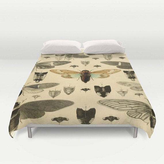 "Cicada Duvet Cover by Suzanne Carter, duvet, Vintage Illustration, Insects,  88"" x  88"""