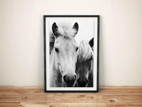 Black and White Horse Printable