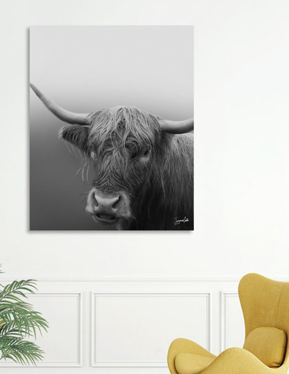 Highland Cow -Shipped Archival Print