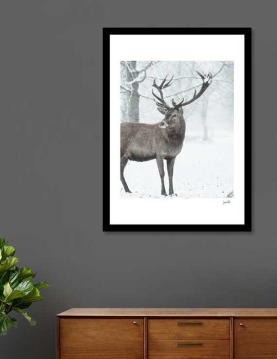 Winter Breeze -Shipped Archival Print
