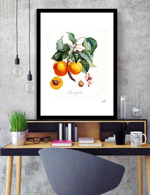 Vintage Apricot Printable Art