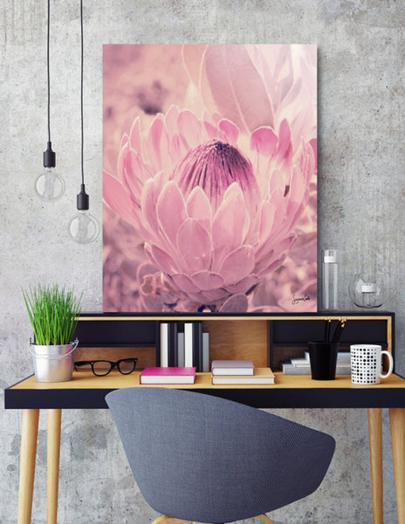 Protea-Pink -Shipped Archival Print