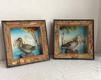 Fathers Day Sale Vintage Wooden Ducks in Picture Frames / 3 D Wall Hangings in Wood Frames by Enesco / Made in Japan