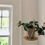 Recycled Wood and Cotton Plant Hanger