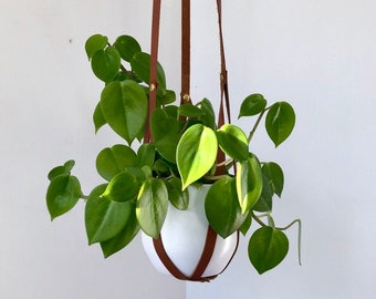 Plant Hanger, recycled leather plant harness to hang your own pot
