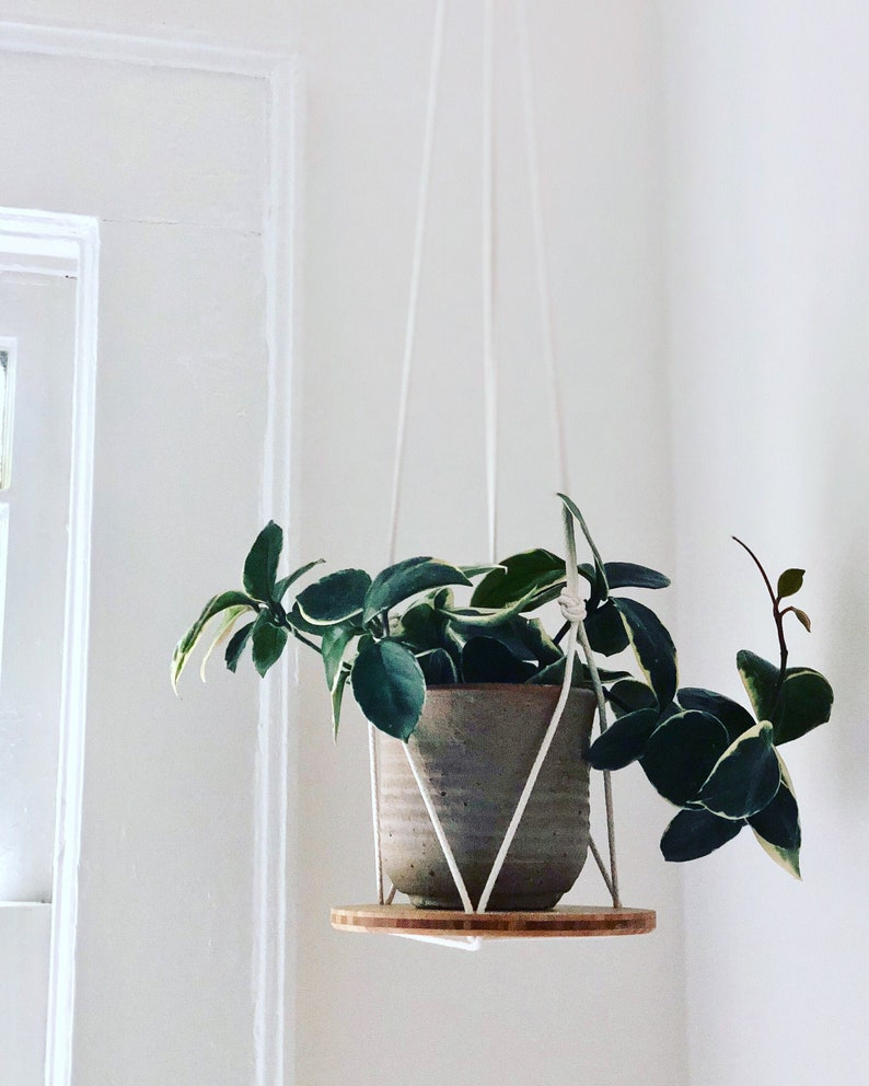Plant Hanger Shelf  recycled bamboo and canadian cotton image 0