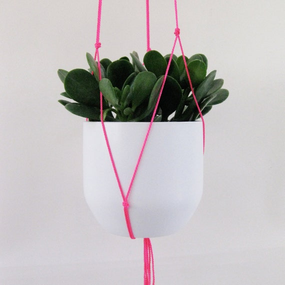 Neon Pink Hanging Plant Holder Etsy
