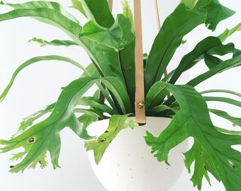 Hanging Planter in Ceramic and Recycled Leather | Porcelain Plant Hanger