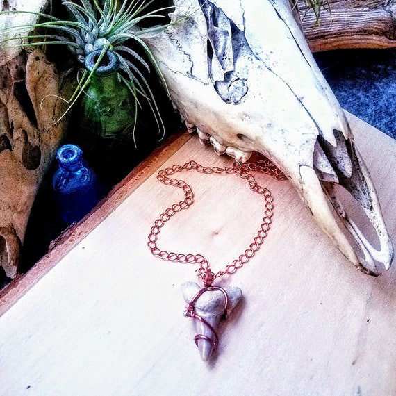 Rustic Ancient Shark Tooth Fossil In Copper Long Chain Pendant