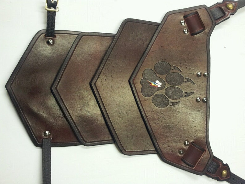 Leather Armor Sentinel segmented shoulder with graphic image 0