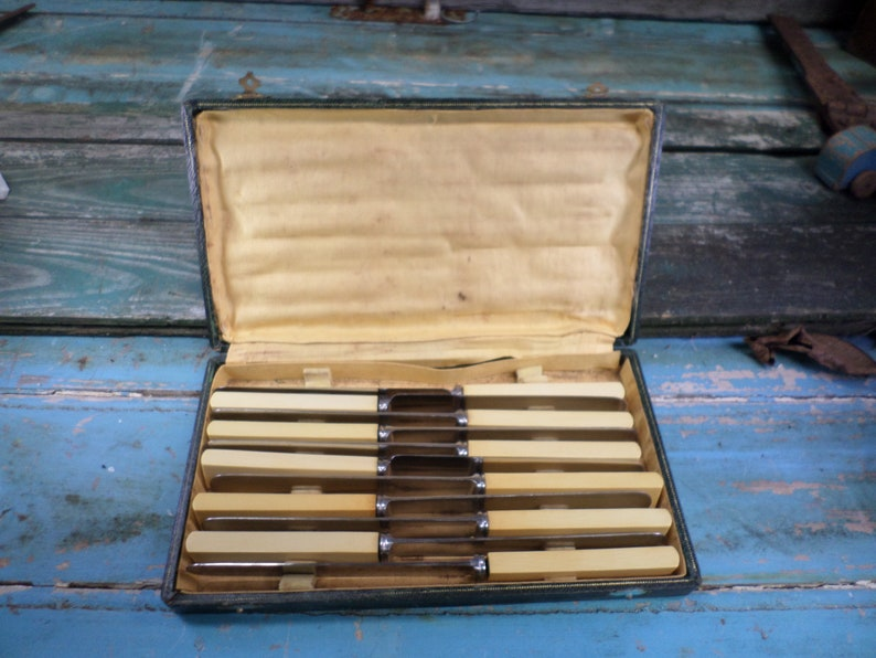 Lot of 11 Vintage French Bakelite /& Stainless Steel Table Knives with case t619