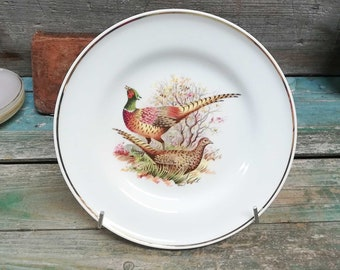 Vintage French Hunting Pheasant Limoges Plate marked SPLO Limoges s575