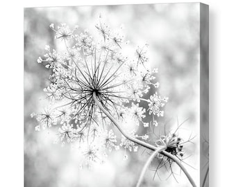 Flower Canvas Gallery Wrap, Queen Anne's Lace, Unique Home and Office Decor, Feminine, Black and White Canvas Wall Art, Modern Rustic