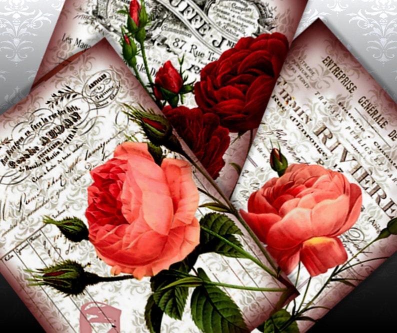 FRENCH ROSE  Printable Vintage Ephemera Image Different Sizes image 0